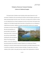 wetlands wastewatertreatment
