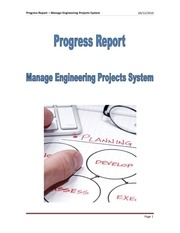 progress report 28 12 2010