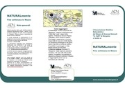 PDF Document brochure fine settimana in museo