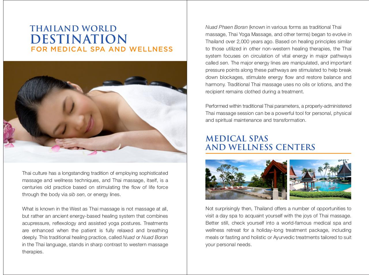 Medical Spa and Wellnes.pdf - page 2/20