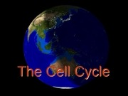 PDF Document 14 the cell cycle