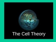 6 cell theory
