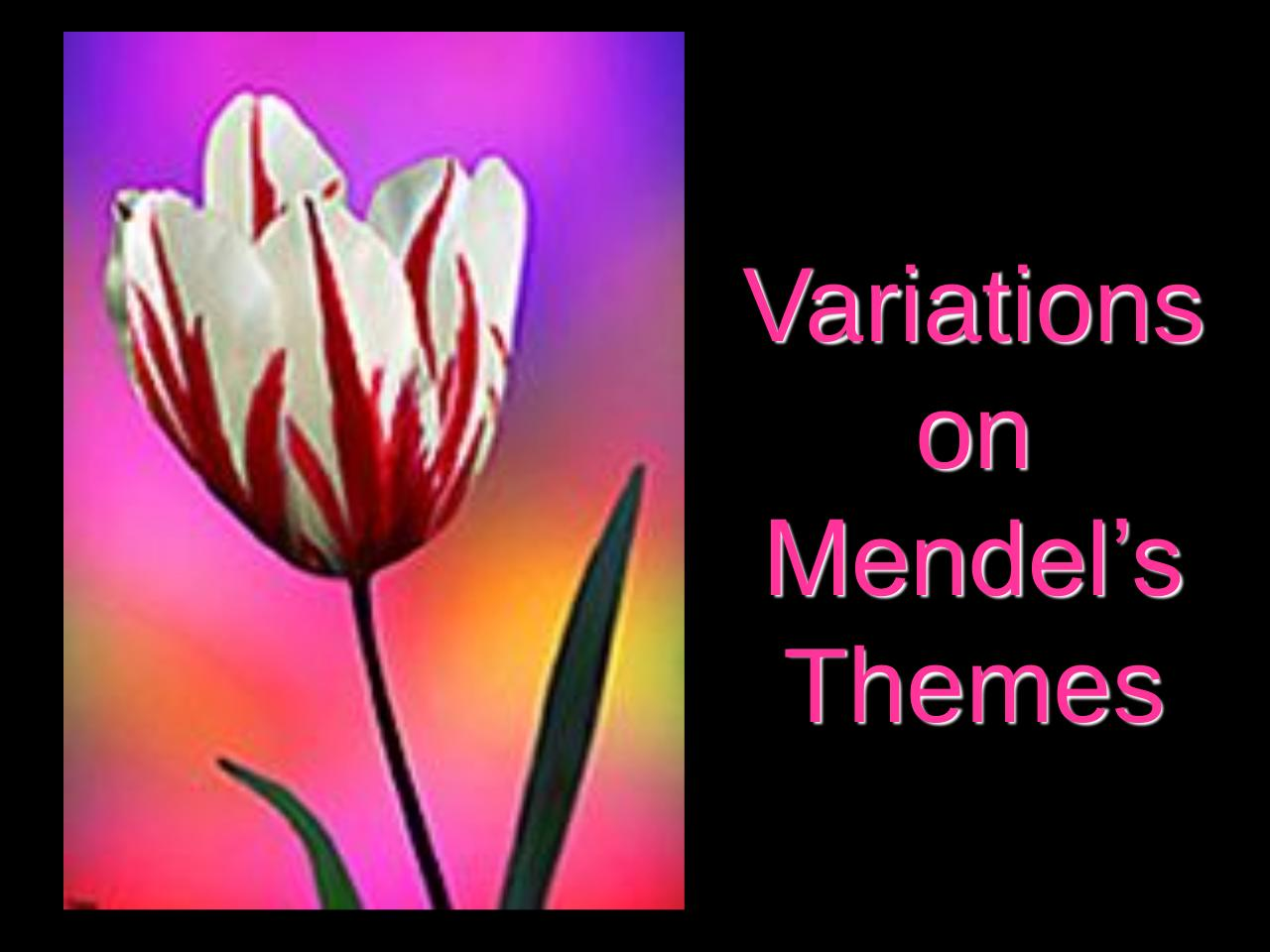 17 variations on Mendels Themes.pdf - page 1/24