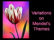 17 variations on mendels themes