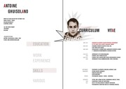 PDF Document antoine ghuisoland cv book