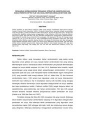 PDF Document 30 sitti yani akhiruddin maddu irmansyah