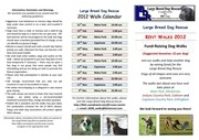 large breed dog rescue walks 2012 flyer