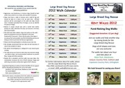 large breed dog rescue walks 2012 flyer