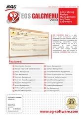 web flyer