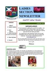 newsletter issue 3 january 2013 1