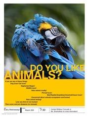 animal poster 2