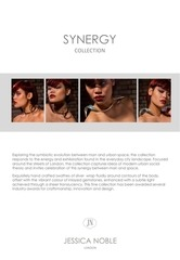 synergy collection