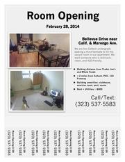 PDF Document roommate flyer