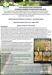 undergraduate summer studentship at rothamsted research