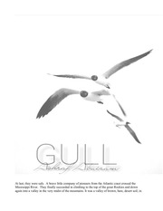copy of gull final