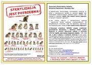 PDF Document plakat zapytaj ministra pl