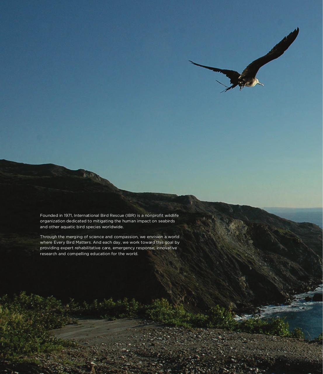 International Bird Rescue 2013 Annual Report.pdf - page 2/32