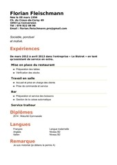 PDF Document curriculum vitae 2 0