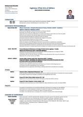 PDF Document cv mohammed rouam