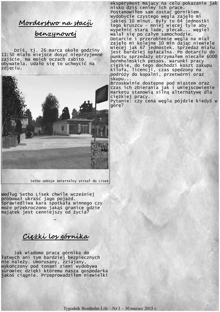 report a pdf for copyright