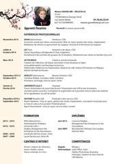 PDF Document cv blossom