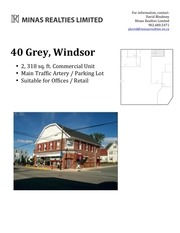 PDF Document minas pdf 40 grey