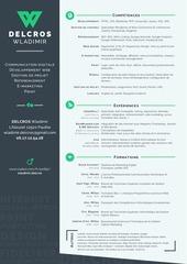 PDF Document wladimir delcros cv