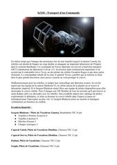 PDF Document scx01transportdduncommando