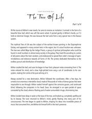PDF Document the trees of fate dopinephrine 3