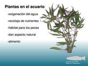 PDF Document aquaris 2 5 14