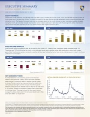 PDF Document capital market briefing commentary