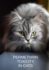 PDF Document permethrin toxicity