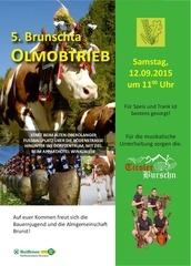 PDF Document olmobtrieb2015 oberolang