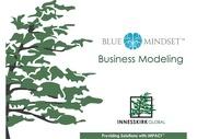 PDF Document bluemindset tools and audit info 20aug2015