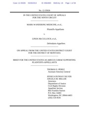 us amicus brief