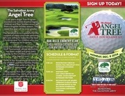 ipac 0512 g 8 5x11 angel tree brochure v10
