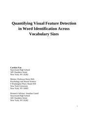 quantifying visual feature detection in word identification