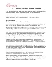 terms and agreement website