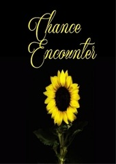 PDF Document chance encounter incomplete by quinton acid