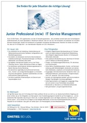 jp it service mgt