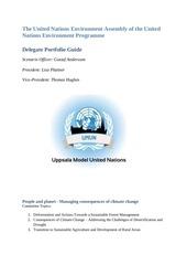 umun2016 delegate portfolio guide unea