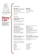 PDF Document remylaw resume