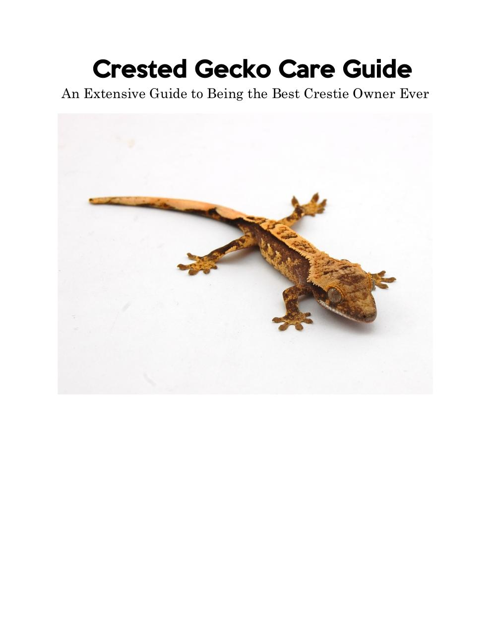 Crested Gecko Care Sheet.pdf - page 1/15