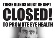 PDF Document blinds