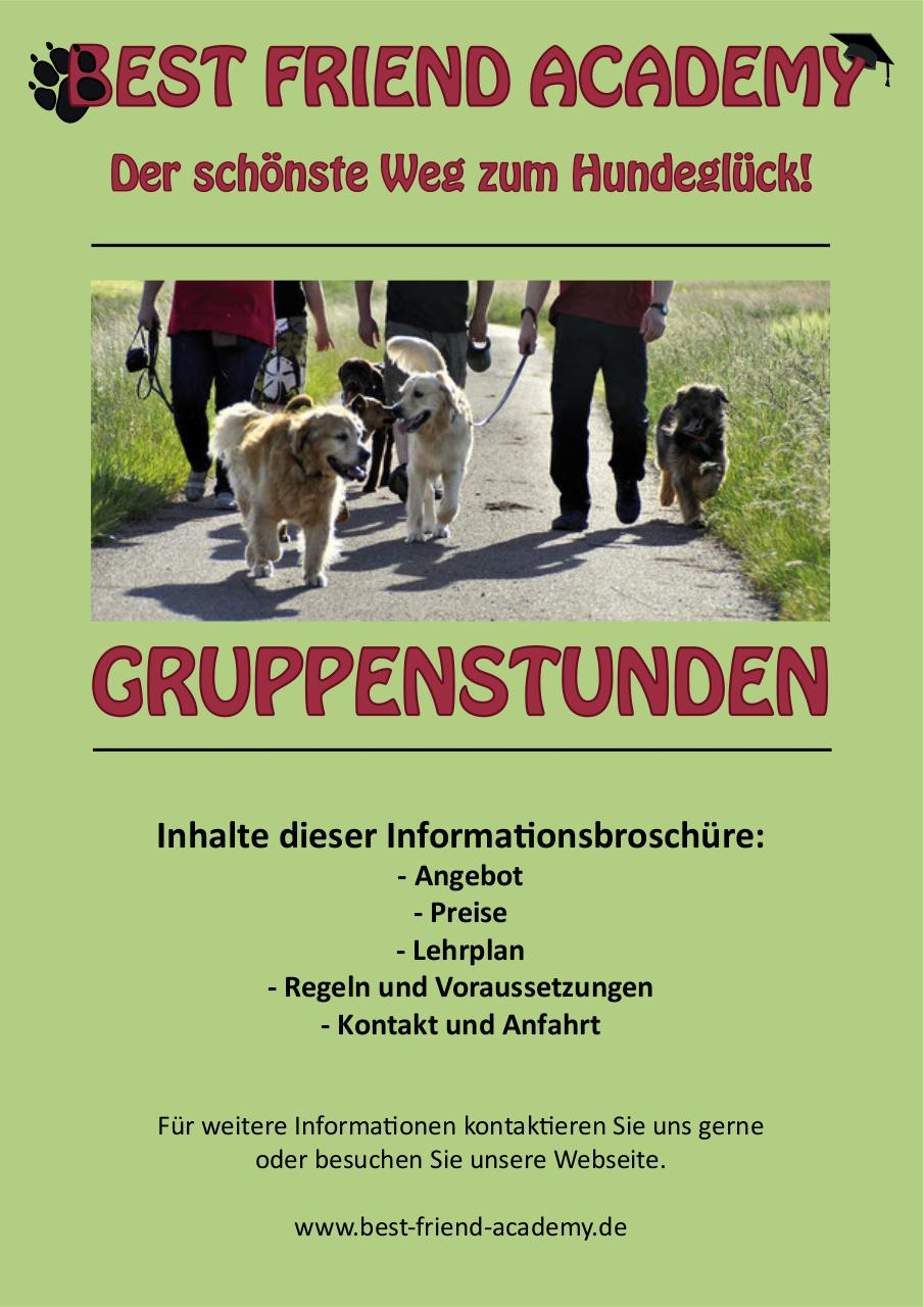 Flyer Gruppenstunden green.pdf - page 1/6
