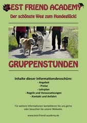 flyer gruppenstunden green