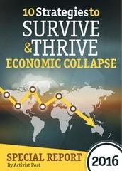 survive thrive economic collapse activist post 2016 02