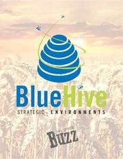 bluehive capabilites 2016