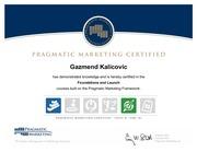 pragmatic marketing certification 00115518