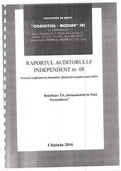 raport audit 2014